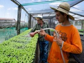 26 emater agricultura familiar nova floresta 261 270x202 - Emater completa 58 anos com ações de inclusão produtiva e social para agricultores