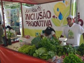 jornada produtiva em SUME 4 270x202 - Governo distribui sementes de sorgo e raquetes de palma em Sumé