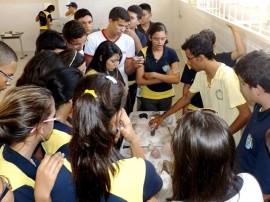 mostra mineralógica 2 270x202 - Estudantes participam de Mostra Mineralógica em Santa Luzia