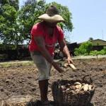 seap presidio colonia agricula foto antonio david (29)