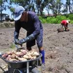 seap presidio colonia agricula foto antonio david (42)