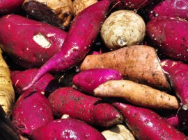 seap presidio colonia agricula foto antonio david 54 270x202 - Alimentos cultivados por reeducandos abastecem unidades prisionais