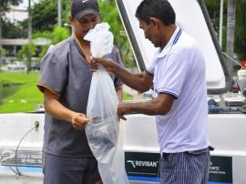 sedap semana do peixe foto jose lins 5 270x202 - Semana do Peixe disponibiliza pescado com 60% de desconto