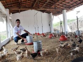 15.03.13 jovem larga emprego comercio criar galinha apoio emater 1 portal 270x202 - Governo investe mais de R$ 350 milhões no desenvolvimento da agropecuária