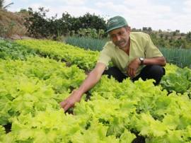 emater dia de campo massaranduba 7 270x202 - Governo investe mais de R$ 350 milhões no desenvolvimento da agropecuária