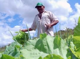 emater semana nacional de alimentacao 2 270x202 - Governo comemora Semana Nacional da Alimentação