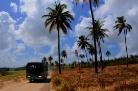 FORTE VELHO 1 270x179 - Ricardo autoriza pavimentação de rodovia que liga a BR-101 a Forte Velho