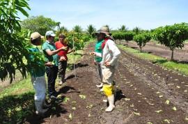 emater dia nacional do extencionista rural 3 270x179 - Governo comemora Dia Nacional do Extensionista Rural