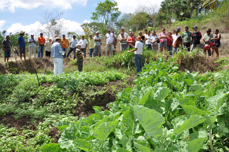 Resultado de imagem para dia da extensão rural no brasil