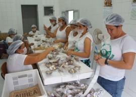 18.02.14 cocada na kenga 31 270x192 - Com apoio do Governo, cocada na quenga gera renda para mulheres no Litoral Norte