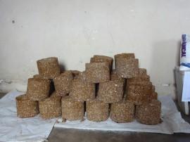 emater Vieiropolis blocos multinutricionais 3 270x202 - Governo capacita criadores para confeccionar blocos multinutricionais