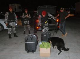 policia militar e rodoviaria da pb e pe operacao divisa segura 8 270x202 - 'Operação Divisa Segura' reprime tráfico de drogas entre Paraíba e Pernambuco