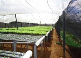 11.03.14 agricultura familiar 3 270x192 - Paraíba comercializará produtos da agricultura familiar na Copa do Mundo