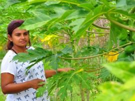 emater Agricultura dia da mulher 3 270x202 - Emater Paraíba realiza encontro sobre conquista social da mulher rural
