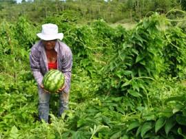 mulher rural2 270x202 - Governo do Estado realiza 1º Encontro Estadual da Mulher Rural nesta quarta-feira