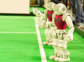 robocup 2014 1 270x202 - Geração de oportunidades: voluntários vão atender turistas durante a RoboCup