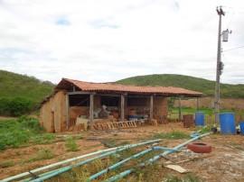 tarifa verde melhora a vida de agricultores irrigantes da paraiba 2 270x202 - Tarifa Verde melhora a vida de agricultores irrigantes na Paraíba