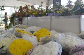 28.04.14 edição da Feira das Flores da Paraíba 3 270x179 - Governo do Estado divulga programação da Feira das Flores na Empasa