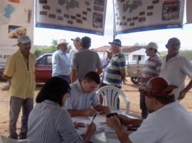 14.05.14 programa producao palma forrageira 1 270x202 - Estado tem apoio do Insa em programa de produção de palma forrageira