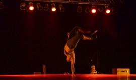 Terreiro Envergado 2 270x160 - Escurinho e Coletivo Tanz são atrações do Circuito Cultural nesta sexta-feira