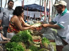 emater e prefeitura de itabaina jornada produtiva parceria de fortalecimento da agricultura familiar 21 270x202 - Governo firma parcerias para fortalecer agricultura na região de Itabaiana
