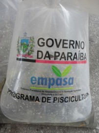 02.06.14 alevinos serao distribuidos produtores rurais 1 202x270 - Empasa distribui alevinos para produtores rurais de Pombal e Aparecida
