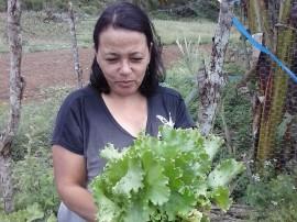 16.06.14 agricultoras de santa ceclia cultivam hortas orgnicas 41 270x202 - Emater incentiva agricultoras de Santa Cecília a cultivarem hortas orgânicas