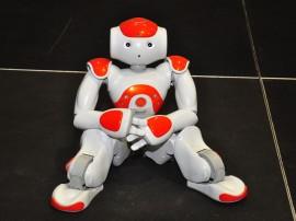 30.06.14 apresentacao robocup fotos roberto guedes 2 270x202 - Governo lança RoboCup2014 com demonstração de robôs na capital