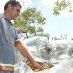 10.11.14 apicultores_agricultores_familiares_agua branca (3)
