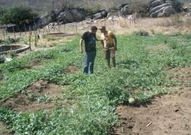 16.12.14 agricultores comercializam 500t alimentos pelopaae 2 270x192 - Agricultores comercializam 500 toneladas de alimentos em Sousa neste ano