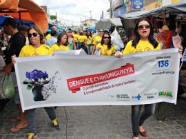 Ação Dengue Aroeira FOTO Ricardo Puppe 270x202 - Governo abre Dia D da Dengue no município de Aroeiras