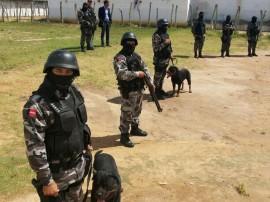 PM Canil da policia 15 270x202 - Cães adestrados treinam para localizar celulares em presídios e fugitivos em matas da Paraíba