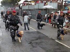 PM Canil da policia 5 270x202 - Cães adestrados treinam para localizar celulares em presídios e fugitivos em matas da Paraíba