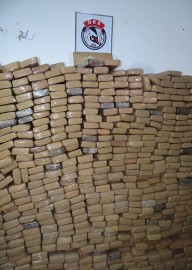 aprensao drogas2 192x270 - Polícia apreende mais de duas toneladas de drogas em 2014 na Paraíba