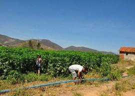 11.02.15 agricultores nazarezinho comecam venda deprodutosa 3 270x192 - Agricultores de Nazarezinho começam vender produtos ao Programa de Aquisição de Alimentos