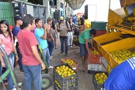 27.02.15 alunos campus bananeiras visitam empasa 3 270x180 - Alunos da UFPB do campus de Bananeiras visitam a Empasa