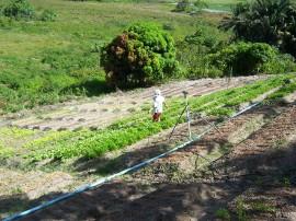13.03.15 mater usa tecnologia social para economizar energiana 4 270x202 - Emater usa tecnologia social para economizar energia na agricultura familiar