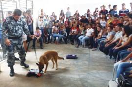 Canil na escola contra as drogas Cajazeiras 4 270x179 - Polícia realiza palestras de prevenção às drogas em escolas de Cajazeiras