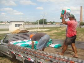 sementes 1 270x202 - Governo distribui 760 toneladas de sementes certificadas para agricultores familiares