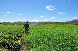 23.04.15 governo capacitata tecnicos trabalhar agroecologia patos 1 270x179 - Governo capacita técnicos para trabalhar a agroecologia no Semiárido paraibano