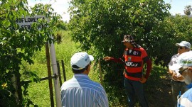 23.04.15 governo capacitata tecnicos trabalhar agroecologia patos 3 270x151 - Governo capacita técnicos para trabalhar a agroecologia no Semiárido paraibano