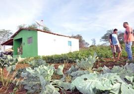 Emater producao e venda de hortalicas muda vida de familia em suma agricultura 2 270x191 - Governo do Estado incentiva agricultura familiar em Sumé