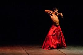 danceabril apresentações3 270x180 - Governo, Fórum Permanente de Dança e UFPB promovem evento Dance Abril