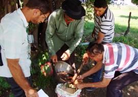 Emater testa algodao herbaceo no sertao foto assessoria da emater 1 270x191 - Paraíba testa produção de algodão herbáceo orgânico no Sertão