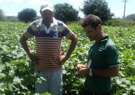 Emater testa algodao herbaceo no sertao foto assessoria da emater 4 270x191 - Paraíba testa produção de algodão herbáceo orgânico no Sertão