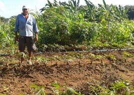agricultores do tarifa verde produzem mesmo com a estiagem 1 270x191 - Agricultores beneficiários do Tarifa Verde produzem alimentos