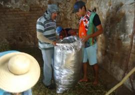 emater criadores de taperoa parende armazenamento de racao em saco silagem 2 270x191 - Criadores de Taperoá aprendem prática de armazenamento da ração em saco