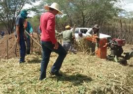 emater criadores no curimatau aprendem a pratica de ensilagem silos picui 1 270x191 - Governo do Estado ensina a prática deensilagem aos criadores do Curimataú