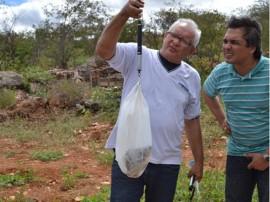 pis534 270x202 - Governo do Estado participa de festival de peixe e distribui alevinos em Camalaú
