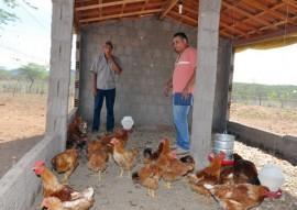 07.07.15 emater inclusão social na agricultura familiar foto emater 1 270x191 - Governo incentiva agricultura familiar e garante inclusão social de agricultores